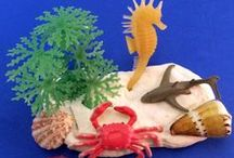Over in the Ocean in a Coral Reef by Marianne Berkes / Activities inspired by the book Over in the Ocean in a Coral Reef.