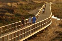 Alvor / Alvor, Algarve, Portugal 2012