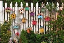 Bird Houses & Feeders / by Michele Martinez  JW.ORG