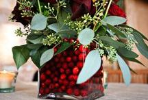 Cranberry Crafts & Decor / Simple ways to craft and decorate with cranberries. Wedding, Thanksgiving, Fall & Christmas Centerpieces.
