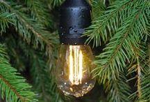 LED Filament Light Bulbs (High Efficiency)