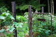 gardenbed inspiration.