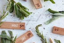 plant label ideas.