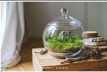 plant.room / Mikroświaty. Aranżacja przyjęć. Dekoracje florystyczne. Bukiety. Zaproszenia. Projekty małych ogrodów, tarasów i balkonów. Zielone ściany.