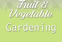 Fruit, vegetable Gardening / How to grow quality fruit and vegetables from home
