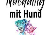 Nachhaltiges Leben mit Hund ☆ / Die Entwicklung zum Green Dog, ökologisch und nachhaltig Leben mit Hund Minimalismus | Nachhaltigkeit | Ökologisch Leben | Zufriedenheit | Bewusstes Leben mit Hund | Natürlichkeit  #minimalismus #nachhaltigkeit #bewusstleben #natur