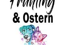 Frühling & Ostern mit Hund / Der Frühling ist die schönste Zeit des Jahres, gekrönt von Ostern. Hier findest du Inspiration, Leckerchen, Hundekekse, DIY und schöne Deko für diese Jahreszeit. Natürlich alles für und mit Hund. #hund #diy #ostern #frühling