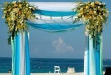 Wedding Mood Board - Beach Theme / Sun on your face wind in your hair the perfect way to say I do