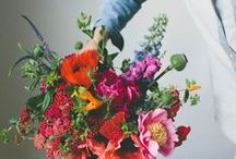Floral Inspiration - Brights
