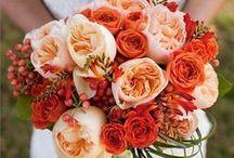 Floral Inspiration - Oranges