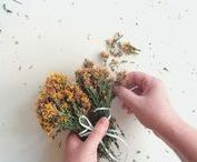 working with our herbs / After being handpicked from the sunny hillside in Chalkidiki, our herbs' journey continues as they are getting dried naturally and packed manually so they can reach your door.