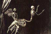 Skulls - Skeletons - anatomies