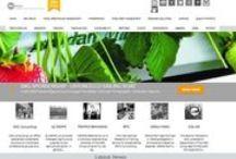 Digital Work / Websites / TROPOS Branding Digital Work