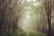 LAND  / De beste landskapsbildene fra #nrksommer på Instagram.