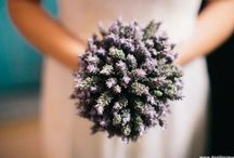 Weddings / Inspirações