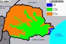 Climas / Climas predominantes nos estados do Brasil