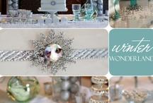 Winter Wonderland Party Theme / by Lauren Kalivas