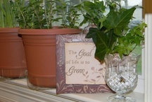 Gardening without a green thumb / by Jeri Repp