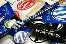 Web Design/Development / Wordpress, Photoshop, Social Networking, Blogging, Themes, Web Design Tips, Fonts / by Alison Engelhardt