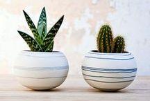 Plant & Flower Decor / Plants make life better.