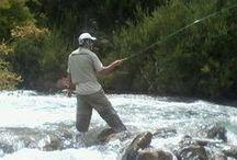 Fly Fishing / Todas las Truchas fueron devueltas a su hábitat!