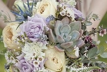 Succulent Wedding Decorations / Inspiring ideas for a succulent thmed wedding.