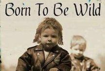 Born to be Wild !!