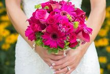 Gerbera Wedding / Ideas for a gerbera themed wedding.