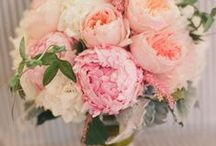 Peony Wedding / Ideas for a peony floral wedding.