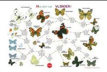 Natuur zoekkaarten