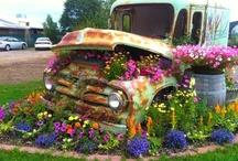 Creatieve plantenbakken
