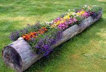 .paisaje & jardín.