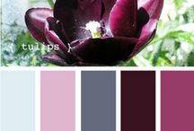 Design - palety barev