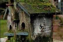 Home - pro ptáčky a miniatury