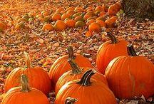 Fall Food