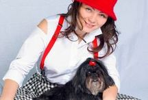 Shih Tzu Emi / The best and most beautiful dog in the world :)