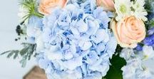 Blue Power Wedding