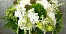 Green Power Wedding