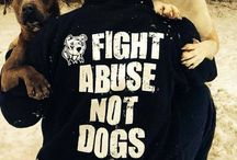 Pit Bull ❤ Fight Abuse Not Dogs