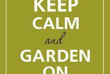 Ogród- skrzynie