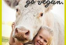 Animals❤ #GoVEGAN / The only thing we need from animals is FORGIVENESS