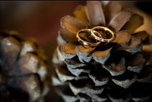 Wedding Rings / Precious moments