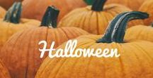 Halloween / Trick or treat? Halloween is full of frights and delights. We're sharing some of our favorite ways to celebrate the spookiest season.