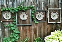 Garden Decor / Decorative features to enhance your garden.