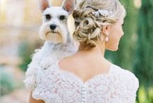 """When we Say""""I Do""""<3 / by Taylor Humphus"""
