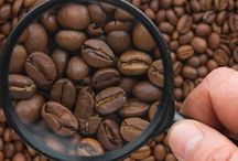 TAG CAFFE'  -  La Storia