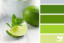 Lime, Gardenia & Benzoin: Mood Board / Inspired by Lime, Gardenia & Benzoin from Dame Perfumery Scottsdale. It's a lush, warm, tropical gardenia that blooms beautifully on skin. Notes: lime, bergamot, grapefruit, black pepper, marigold, gardenia, white pepper, honeysuckle, jasmine, orange flower, muguet, carnation, tuberose, ylang-ylang, hyacinth, rose, benzoin, tolu, and musk.  Find Lime, Gardenia & Benzoin in our In Bloom collection.  http://www.olfactif.com/collections/may-2015-in-bloom