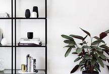 Shelves | Interior