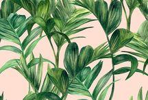 Prints & Patterns | Home