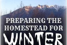Northern Homesteading / Homesteading is a lot of work, but that workload gets even tougher when you're homesteading in the Frozen North! Find all things homesteading in garden Zones 1, 2, 3, and 4!